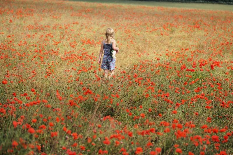 Eliza-Poppy-Field-1