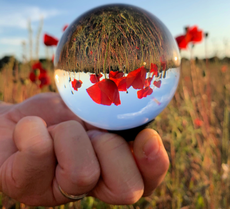 Poppy-lensball