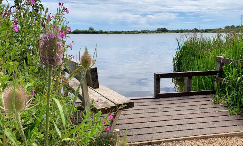 Thistles-Longham-Lakes