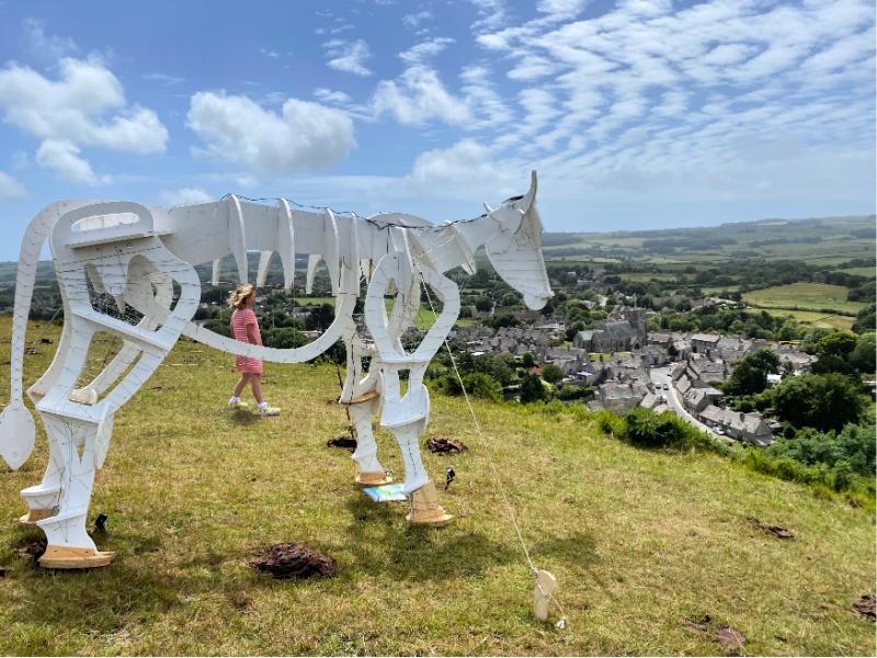 The Dorset Steer